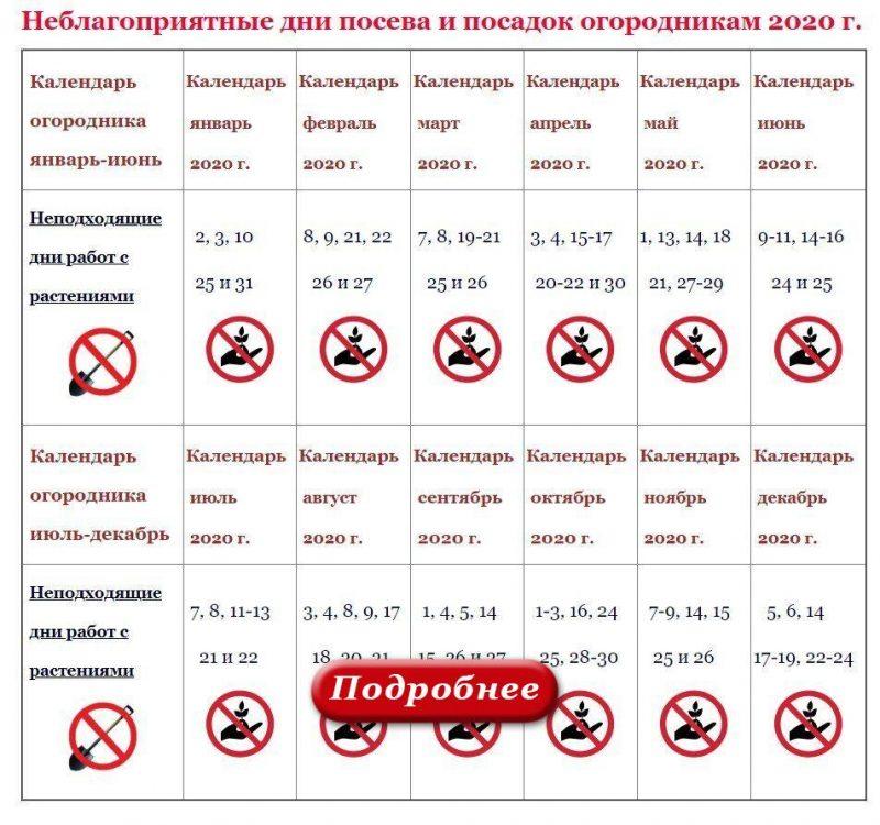 ЛУННЫЙ ПОСЕВНОЙ КАЛЕНДАРЬ 2020