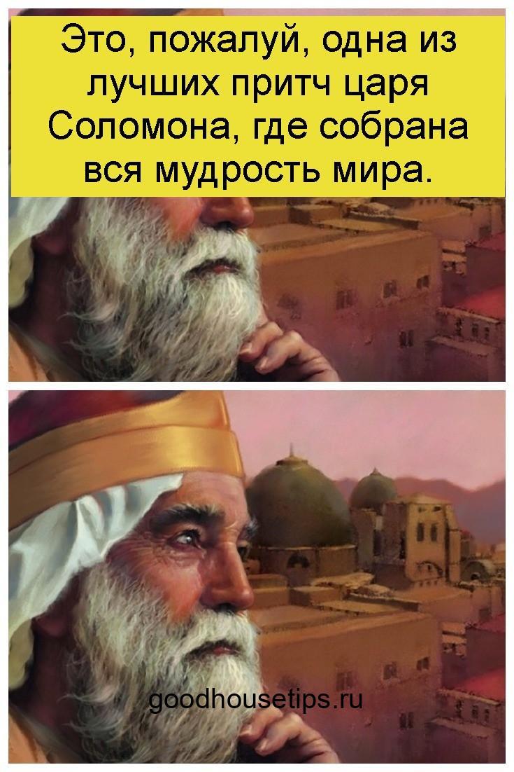 Это, пожалуй, одна из лучших притч царя Соломона, где собрана вся мудрость мира 4