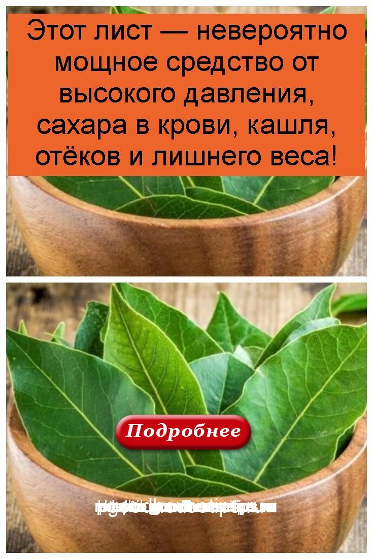 Этот лист — невероятно мощное средство от высокого давления, сахара в крови, кашля, отёков и лишнего веса 4