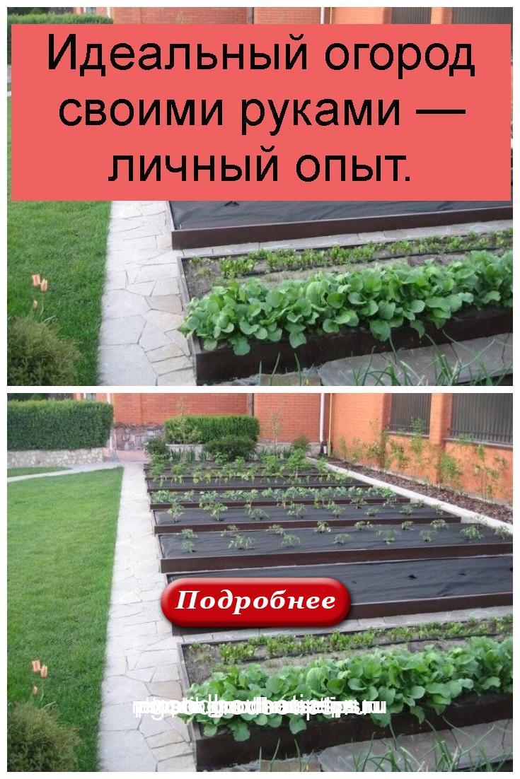 Идеальный огород своими руками — личный опыт 4