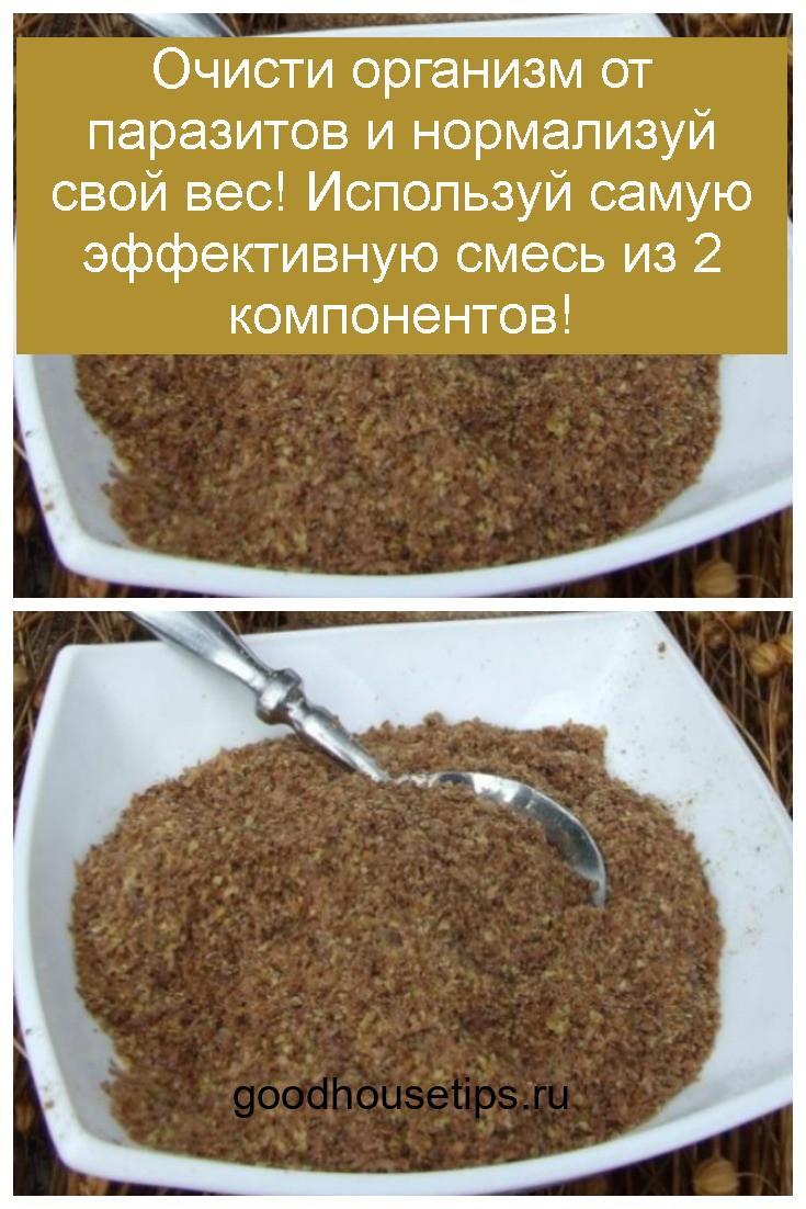 Очисти организм от паразитов и нормализуй свой вес! Используй самую эффективную смесь из 2 компонентов 4