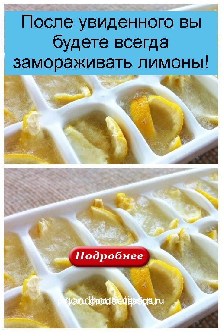 После увиденного вы будете всегда замораживать лимоны 4