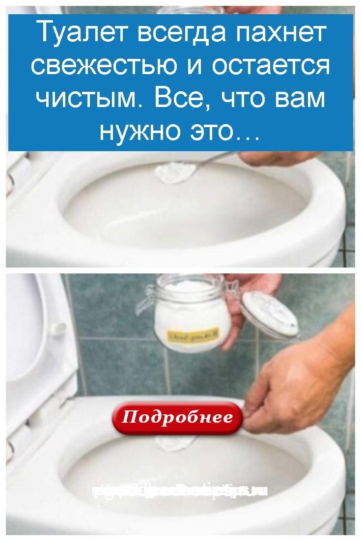 Туалет всегда пахнет свежестью и остается чистым. Все, что вам нужно это 4