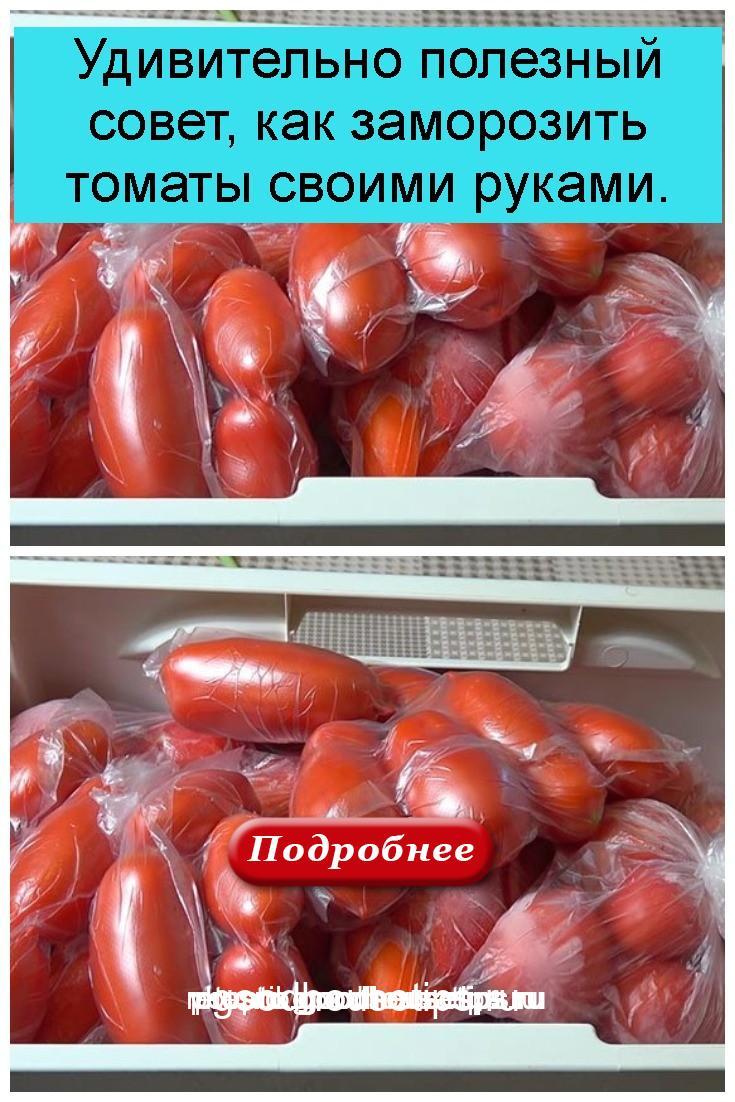 Удивительно полезный совет, как заморозить томаты своими руками 4