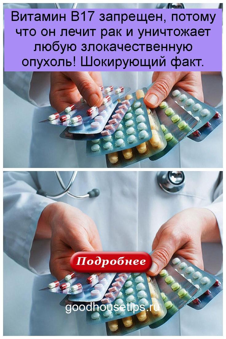 Витамин B17 запрещен, потому что он лечит рак и уничтожает любую злокачественную опухоль! Шокирующий факт 4