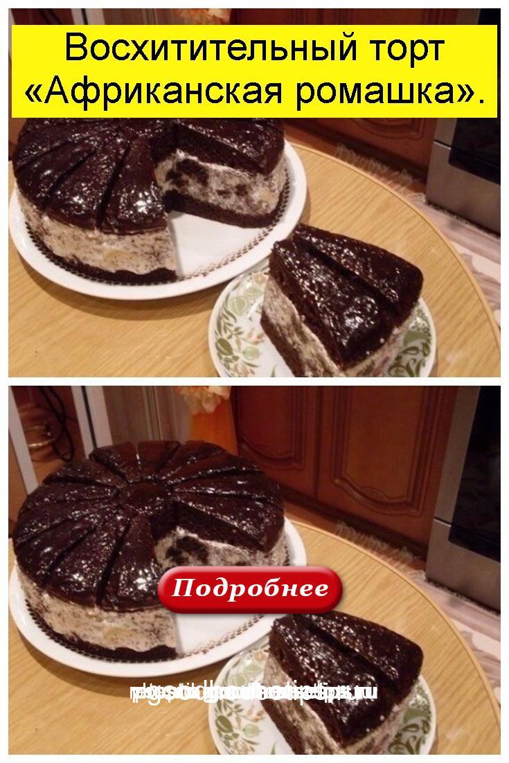 Восхитительный торт «Африканская ромашка» 4