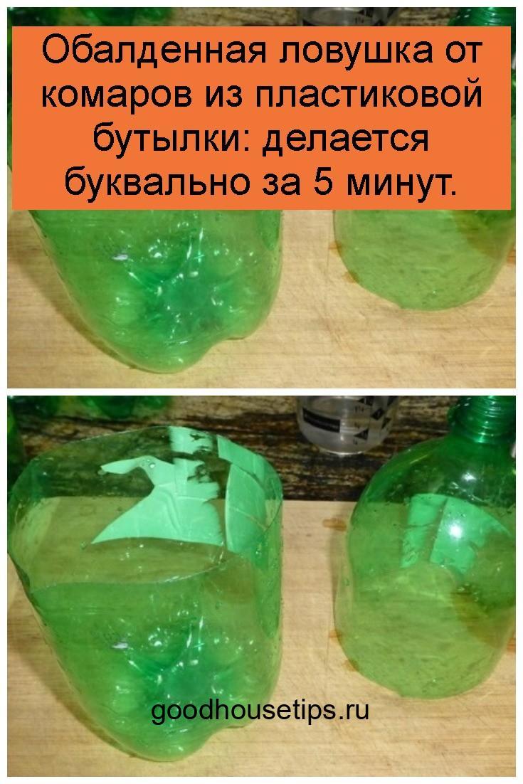 Обалденная ловушка от комаров из пластиковой бутылки: делается буквально за 5 минут 4