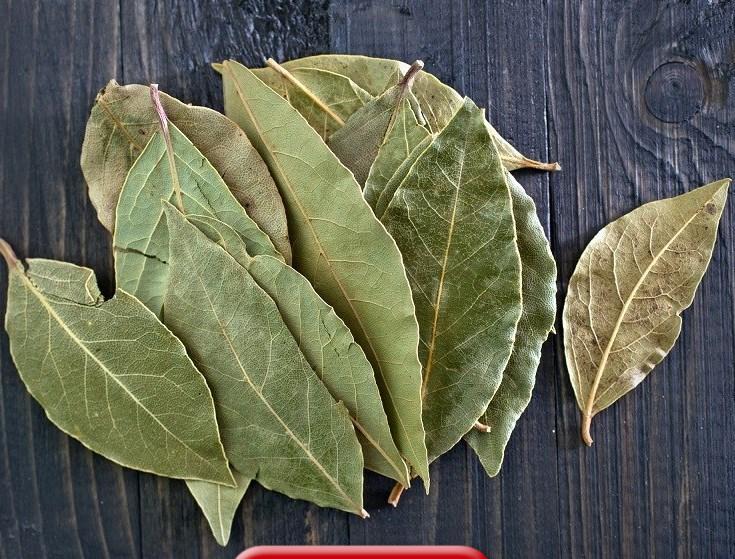 Она разложила лавровые листья по всем углам дома. Узнав зачем, я сделала то же самое и у себя дома 1