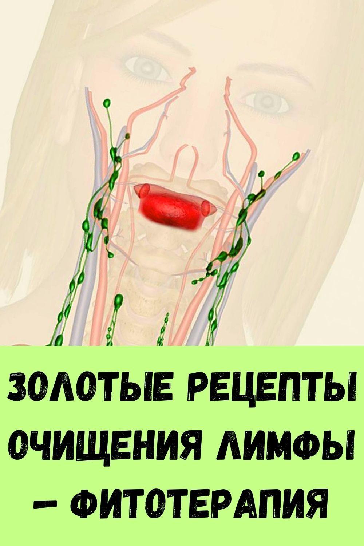 bol-v-sustavah-snimet-gvozdika-3-1