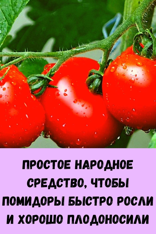 domashnie-kotlety-iz-kabachkov-s-farshem-samyy-vkusnyy-retsept-1
