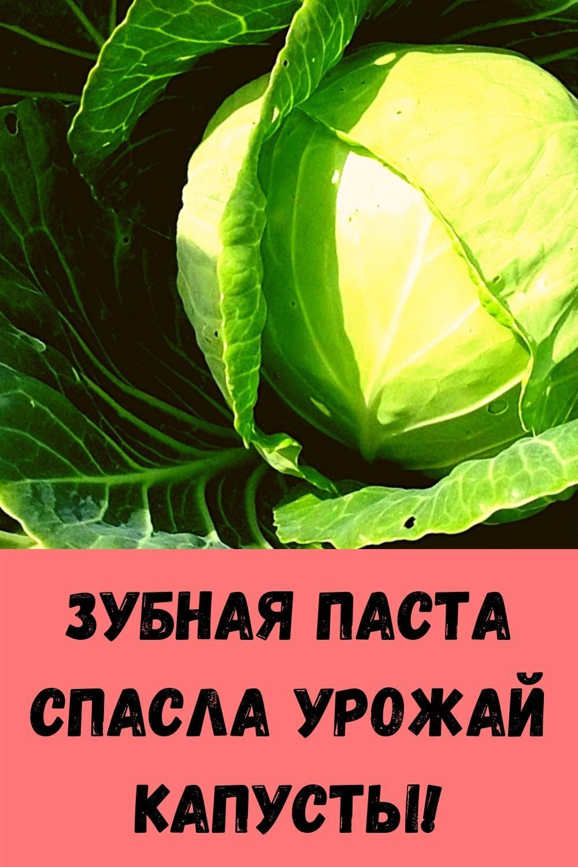 eta-molitva-sposobna-za-minuty-snyat-lyubuyu-bol-17