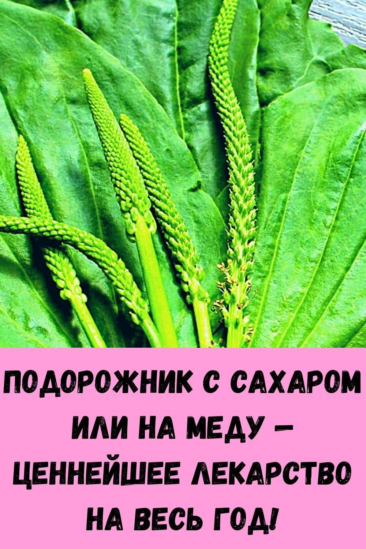 eto-sredstvo-boretsya-s-dryablostyu-kozhi-na-zavist-plasticheskim-hirurgam-12
