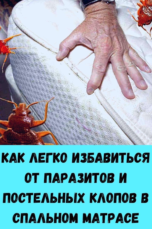 izbavtes-ot-mochevoy-kisloty-i-vylechite-podagru-s-pomoschyu-10-naturalnyh-sredstv-9