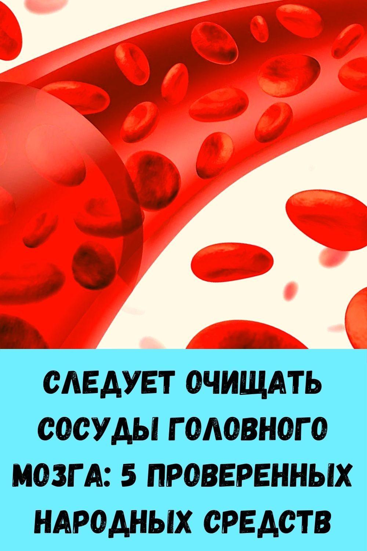 kak-razmnozhit-gortenziyu-cherenkami-poshagovaya-instruktsiya-dlya-novichkov-15