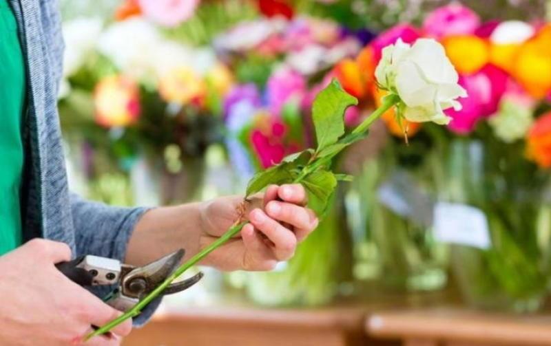 kak-sohranit-srezannye-cvety
