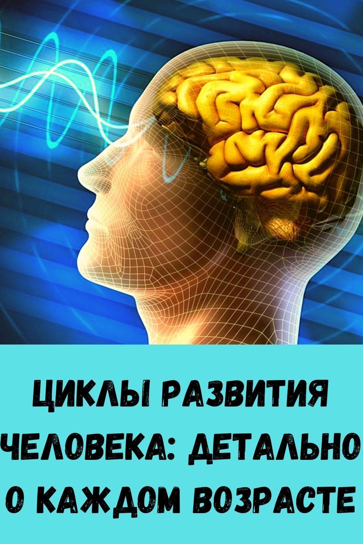 moy-metod-vyraschivaniya-sochnogo-ukropa-bez-zontika-8