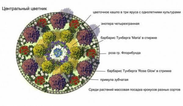 nizkoroslye-cvety-dlja-klumby-kotorye-budut-cvesti-vse-leto-b272865