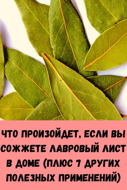 novyy-sposob-ogurtsy-v-butylkah-udobno-i-vygodno-13