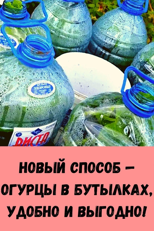 novyy-sposob-ogurtsy-v-butylkah-udobno-i-vygodno-2