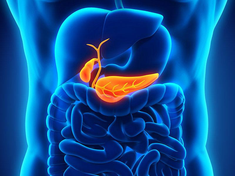 pancreas-img