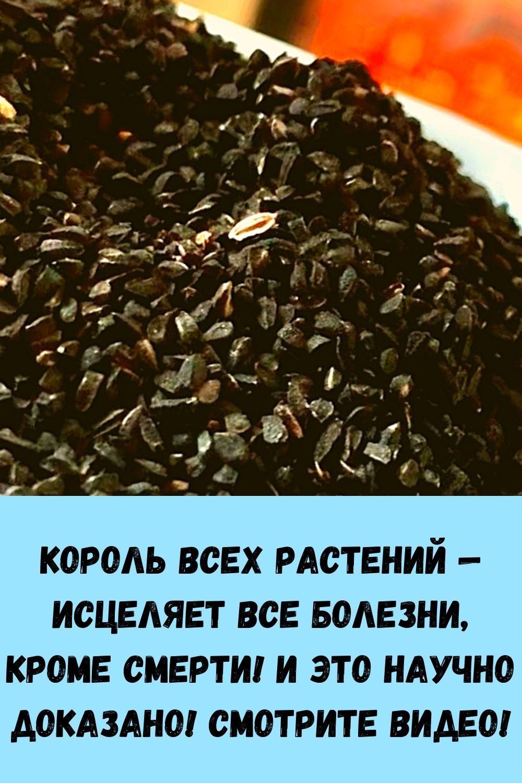pochemu-travniki-rekomenduyut-vsem-zhevat-sushenuyu-gvozdiku_-15