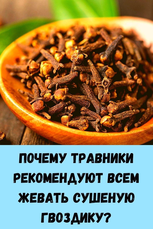 pochemu-travniki-rekomenduyut-vsem-zhevat-sushenuyu-gvozdiku_