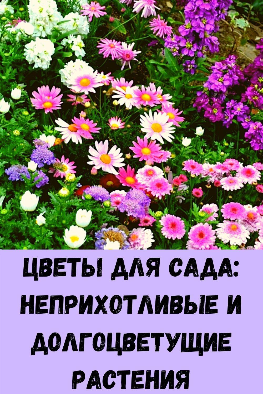 priznaki-mikroinsulta_-eto-dolzhen-znat-kazhdyy-2