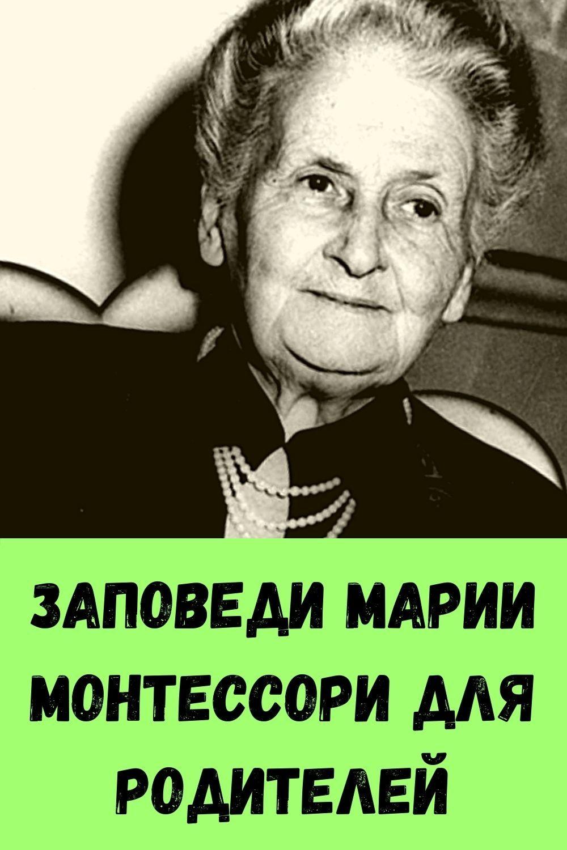 retsept-kabachkov-na-skovorode-dlya-bystrogo-prigotovleniya-13