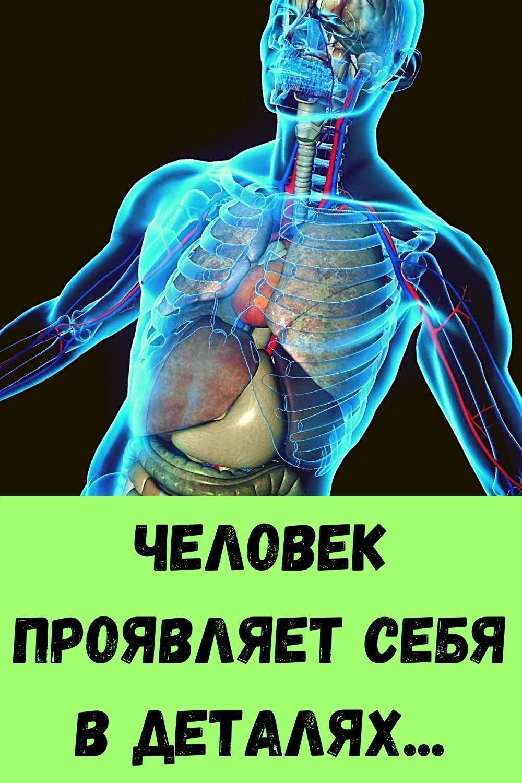 retsept-kabachkov-na-skovorode-dlya-bystrogo-prigotovleniya-5