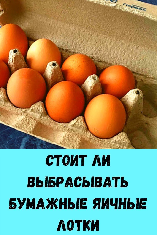 salat-iz-pomidorov-v-banke_-legkaya-vesennyaya-zakuska-za-5-minut-idealno-k-myasu-i-rybe-15