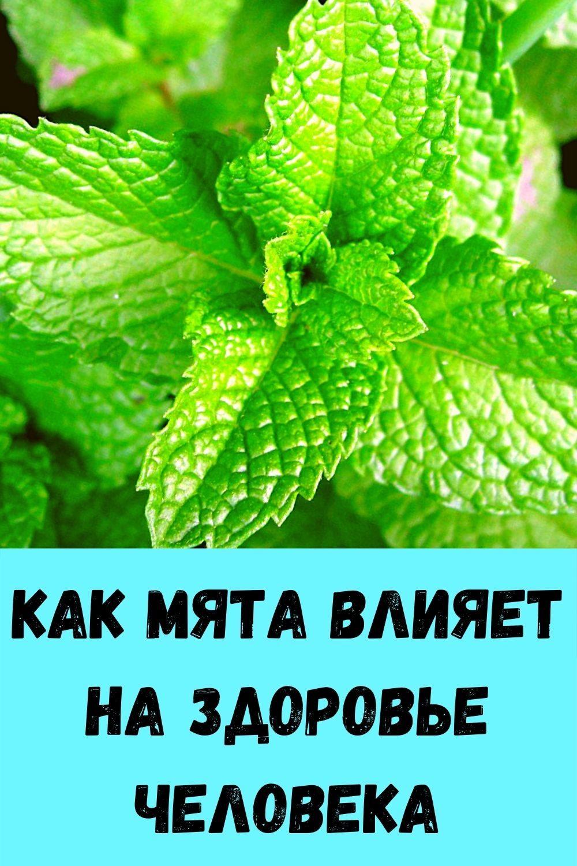 salat-iz-pomidorov-v-banke_-legkaya-vesennyaya-zakuska-za-5-minut-idealno-k-myasu-i-rybe-3