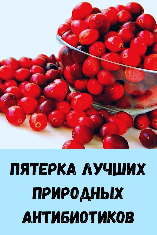 sindrom-venery_-kak-ubrat-zhirovye-podushki-na-bedrah-i-zhivote_-16