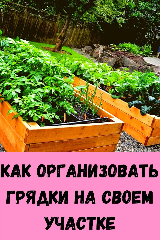 vkusnee-ogurtsov-vy-ne-eli-zimoy-skazhite-mne-spasibo-4