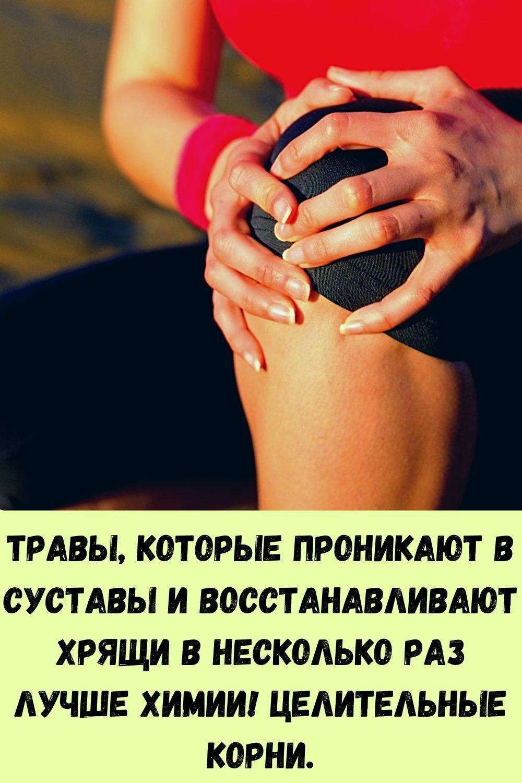 vy-budete-udivleny-tem-chto-vyydet-iz-vashego-kishechnika-eshte-etu-pischu-na-uzhin-3-dnya-1