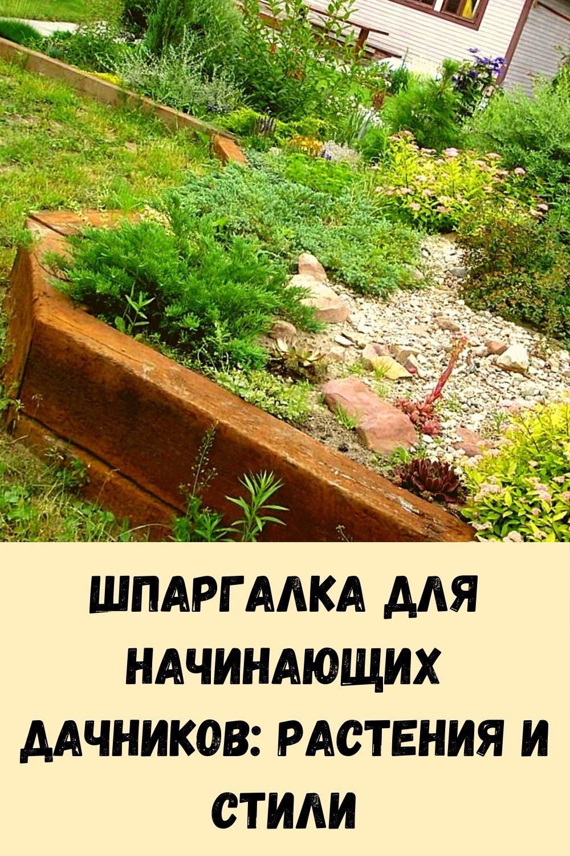 yaponskaya-mudrost_-frazy-smysl-kotoryh-stanovitsya-ponyaten-tolko-s-vozrastom-3