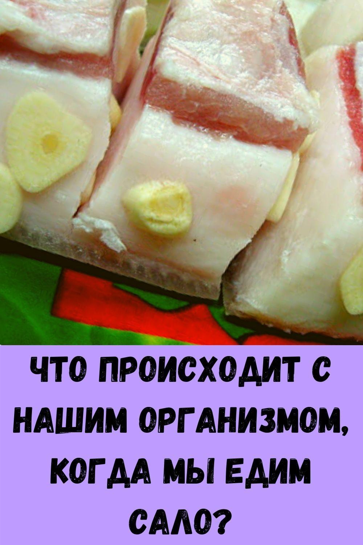yaytso-v-den-i-na-vesy-budesh-vstavat-s-radostyu-8